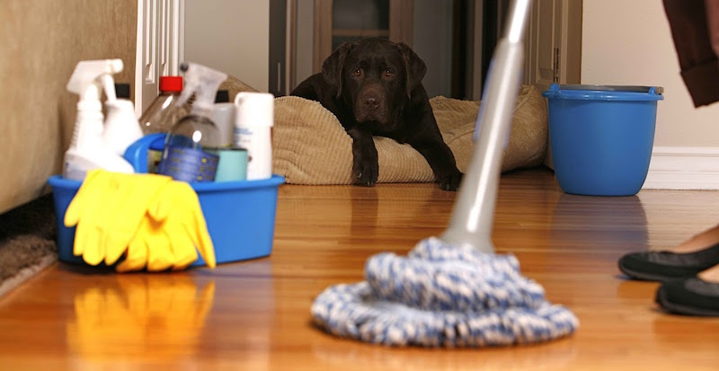 Cleaning Services In Greensboro