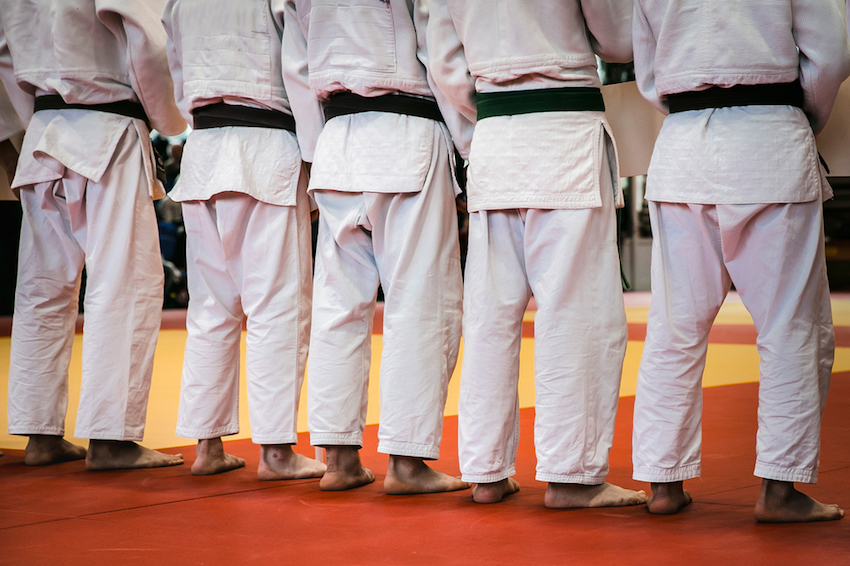 Adult Martial Arts in Hudson