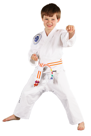 Kids Martial Arts Bartonville