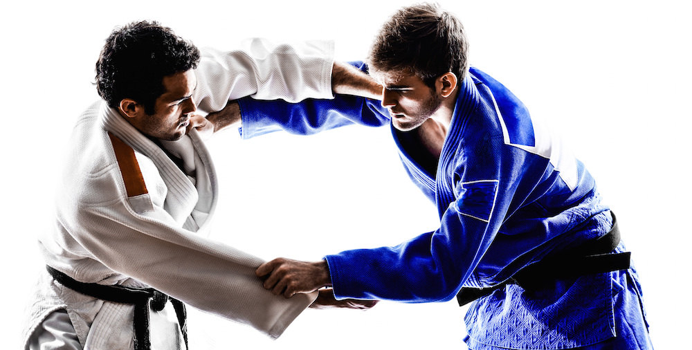 Adult Martial Arts Classes Manassas Virginia