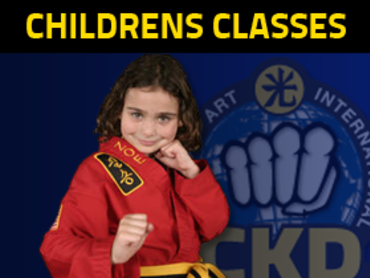 Kennesaw Kids Martial Arts