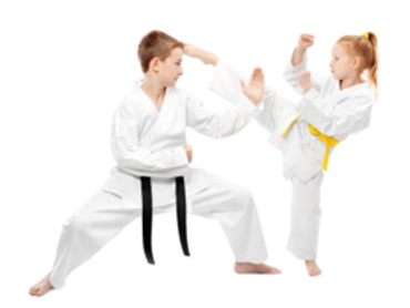 Raleigh Kids Martial Arts