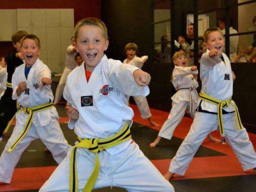 Springfield and Burke Kids Martial Arts
