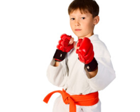 Kids Mixed Martial Arts Classes