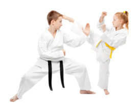 Queens Junior Karate