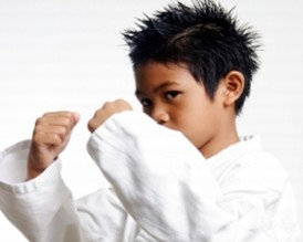 Warrenville Kids Martial Arts