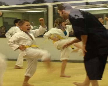 Pinellas Park Kids Karate