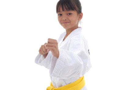 Westchester Kids Karate