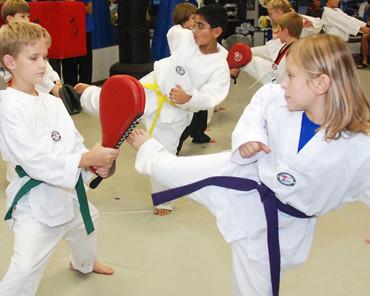 Barrington and Palatine Kids Martial Arts