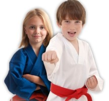 World Kickboxing Academy Kids Martial Arts
