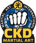 Kids Martial Arts in Kennesaw - CKD Martial Arts Of Kennesaw