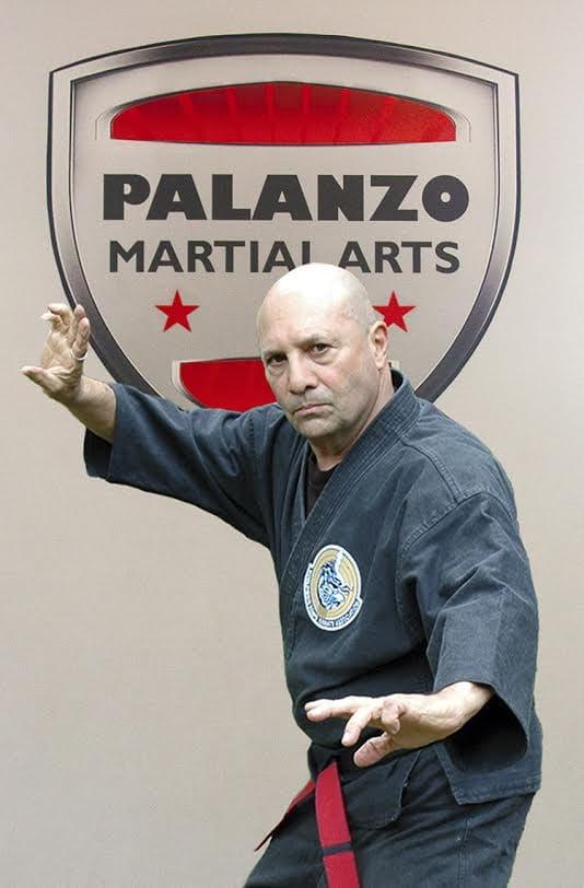 Joe Palanzo in Pikesville - Palanzo Martial Arts