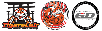 Kids Martial Arts in Mesa - Tigers Lair
