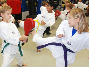Barrington and Palatine Kids Martial Arts