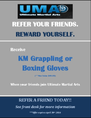 Kids Martial Arts in Chicago - Ultimate Martial Arts - New Referral Program For Martial Arts In Chicago