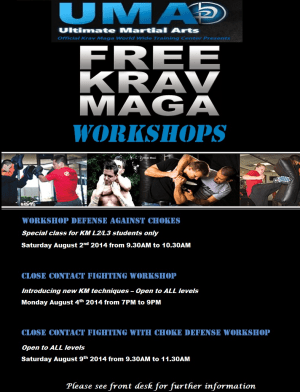 Kids Martial Arts in Chicago - Ultimate Martial Arts - FREE KM WORKSHOPS