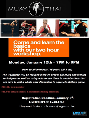 Kids Martial Arts in Chicago - Ultimate Martial Arts - Muay Thai workshop in Chicago