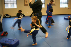 Kids Martial Arts in Plano - USA Martial Arts - Combating Child Obesity in Allen McKinney and Plano
