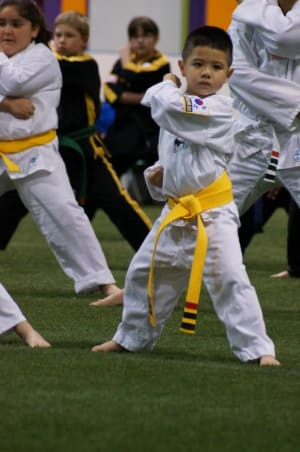 Arts and Leadership Academy Reasons why your child should practice Martial Arts