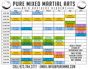 Kids Martial Arts in Rockaway - Pure Mixed Martial Arts - The Time Has Come