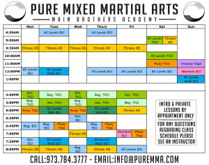 Kids Martial Arts in Rockaway - Pure Mixed Martial Arts - Expanded Schedule Starting September First