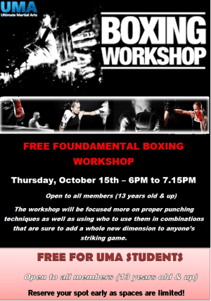 Kids Martial Arts in Chicago - Ultimate Martial Arts - Boxing Workshop