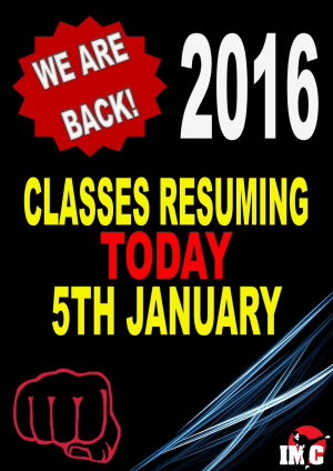 Kids Martial Arts in St Clair, Kemps Creek & Hoxton Park - International Martial Arts Centres - We are back in 2016