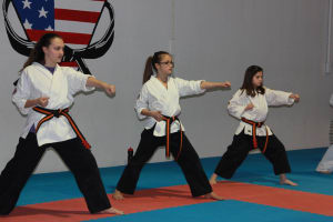Kids Martial Arts in Shawnee - American Sport Karate Centers - What is the difference between Karate and Tae Kwon Do?