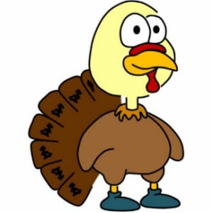 Personal Training in Seattle - Kinetic 6 Fitness - WHAT A BIRD! WHY EATING TURKEY IS THE BEST