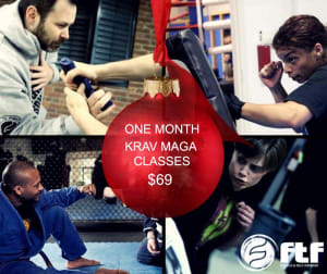 Kids Martial Arts in Chicago - Ultimate Martial Arts - Holiday Special