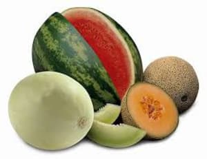 Kids Martial Arts in Danbury - Connecticut Martial Arts - Add Melons to your Diet