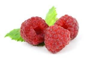 Kids Martial Arts in Danbury - Connecticut Martial Arts - Add Raspberries!