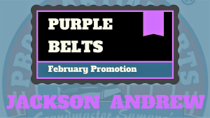 Kids Martial Arts in Naperville - PRO Martial Arts Naperville - Jackson & Andrew Earn Purple Belts - PRO Martial Arts Naperville