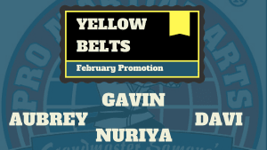 Kids Martial Arts in Naperville - PRO Martial Arts Naperville - Aubrey, Gavin, Nuriya, Davi Test for Yellow Belt