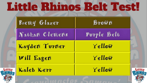 Kids Martial Arts in Naperville - PRO Martial Arts Naperville - Little Rhinos Belt Test - Naperville