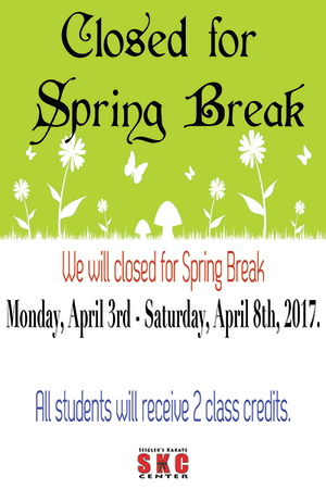 Kids and Teens Karate in Martinez - Seigler's Karate Center - Closed For Spring Break