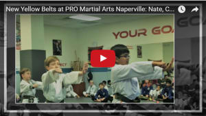 Kids Martial Arts in Naperville - PRO Martial Arts Naperville - New Yellow Belts at PRO Martial Arts Naperville (Video)