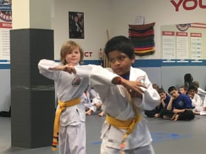 Kids Martial Arts in Naperville - PRO Martial Arts Naperville - Anish & Ashton - Orange Belts at PRO Martial Arts Naperville