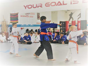 Kids Martial Arts in Naperville - PRO Martial Arts Naperville - Purple Belt Promotion at PRO Martial Arts Naperville
