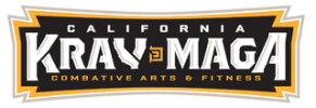 Kids Martial Arts  in San Juan Capistrano - California Krav Maga