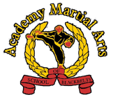 Kids Martial Arts in Stourbridge - Academy Martial Arts