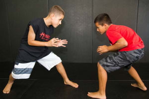 Systems Training Center-Encino Kids Martial Arts