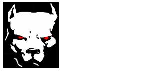 Spero's Martial Arts Academy Logo