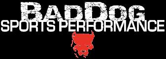 Baddog MMA/Sylvania Brazilian Jiu Jitsu Academy Logo