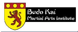 Budo Kai Martial Arts Logo