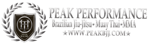 Peak Performance MMA Logo