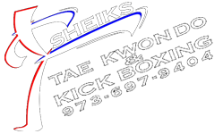 Sheiks Martial Arts