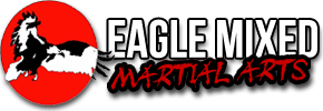Eagle Martial Arts - Boonton Logo