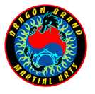 Dragon Brand Martial Arts Logo