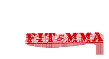 Charleston FIT & MMA Logo